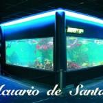 santapolaaquarium02