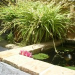 Teich Patio Refugio Marnes, boutique bed and breakfast Spanien