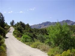 Wanderwoche Spanien, Weg hoch ab Refugio Marnes