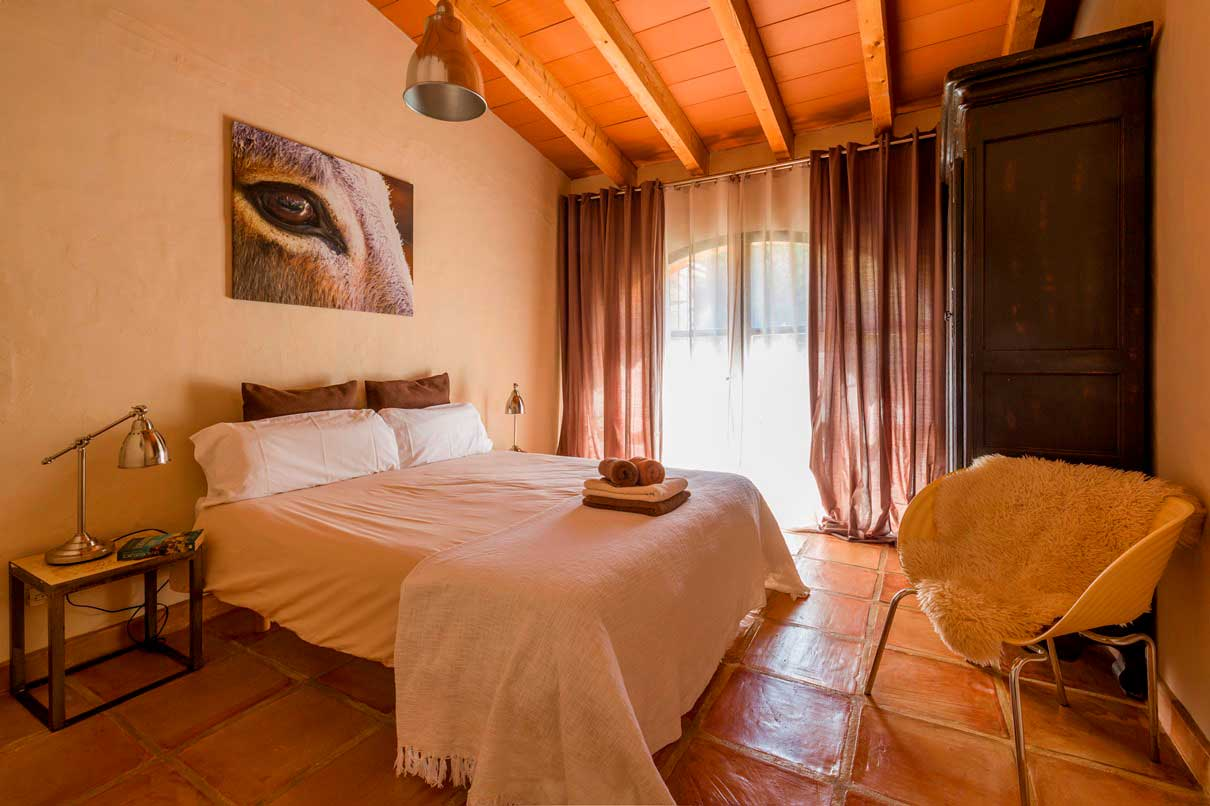 Zimmer Bed and Breakfast Alicante Los Establos