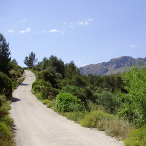 The road to Ecolodge Refugio Marnes