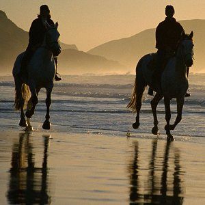 Horseriding at the Costa Blanca beaches