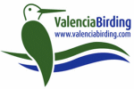 ValenciaBirding - Guided bird watching trips with professional local guide.