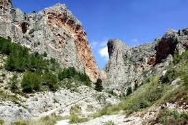 Birding sites alicante, a great spot for observing birds in Spain