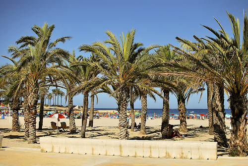 Beach life, Denia, small cities costa blanca