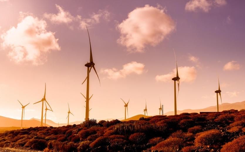 wind energy makes Spain pretty sustainable
