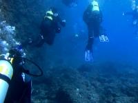 Diving near Calpe