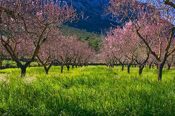 Agrotourismus Spanien