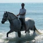 La Llar del Cavall Paseo