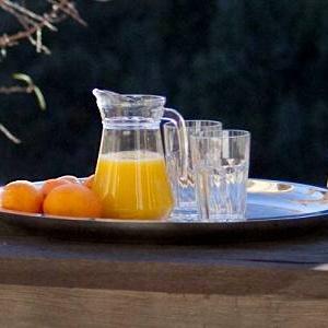 02_breakfast_in_the_sun