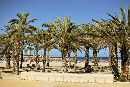 Steden aan de Costa Blanca, Denia, het strand van Denia