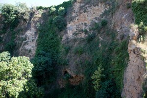 Vogelgebieden Costa Blanca, vall de lliber