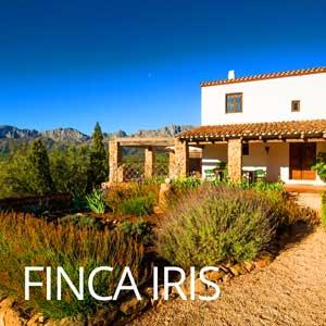 Vakantie Finca Finca Iris